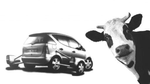 La Pura Mercedes